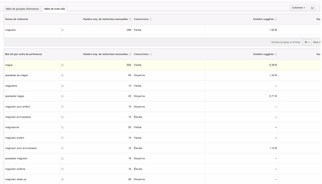 Google-Keyword-Planner-resultats-details
